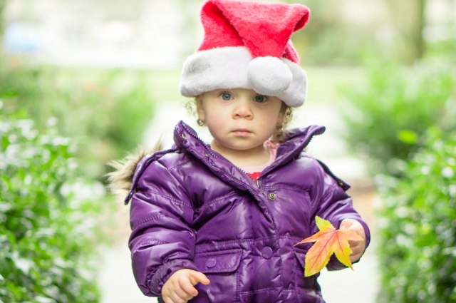 Going for a walk on Christmas Eve.  Should have got her a box of leaves for Christmas...she would have been the happiest tot around!