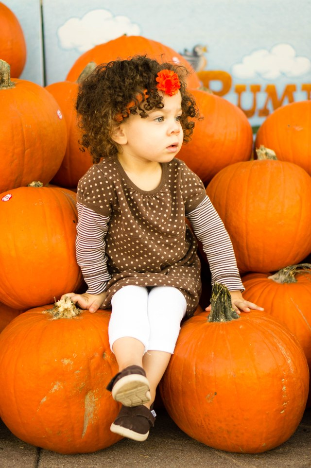 """She and I went a couple days before to pick out a big pumpkin...I got this one picture before she hopped off and said """"NO camera!""""."""