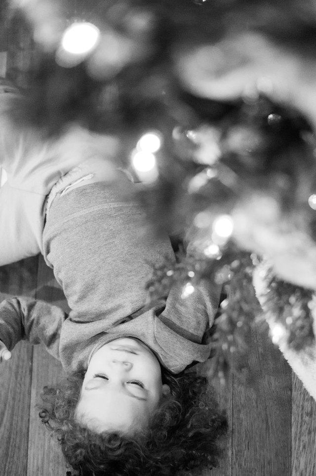 Just laying under the tree, taking it all in.  =)