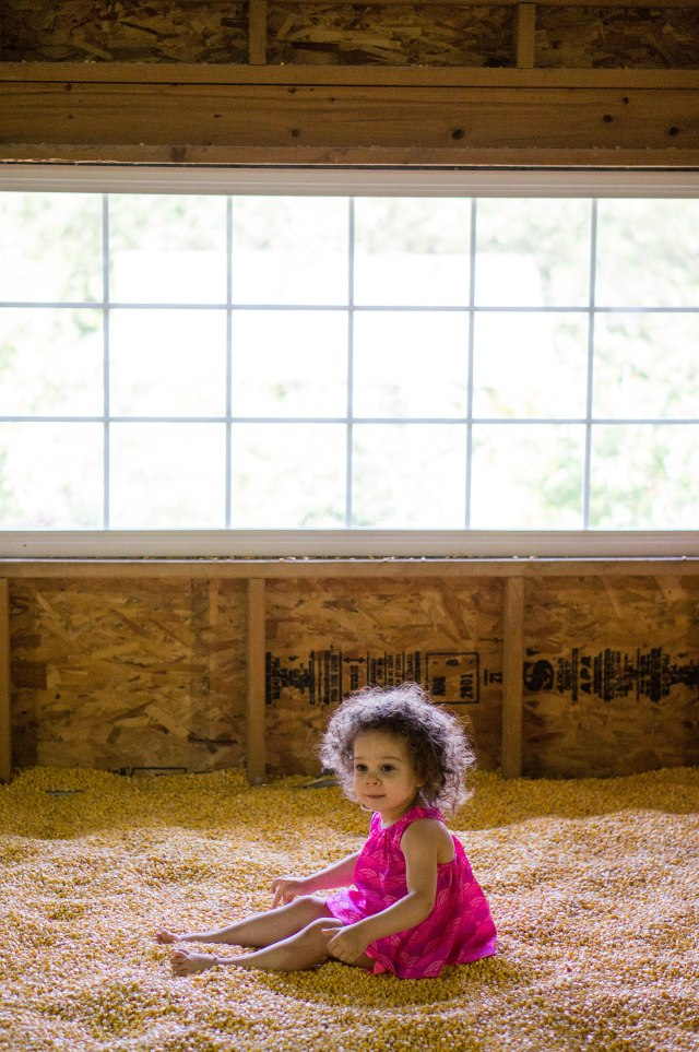 She could have played in this room of corn for a full hour!